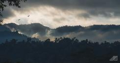 sidemen-moody-sunrise